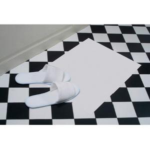 Plastic Coated Floor Mats (case)