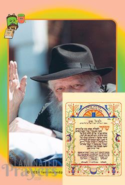Shir Hamaalos Clip NEW (Rebbe)